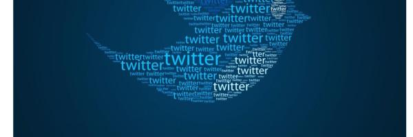 Twitter guida Docnrolla
